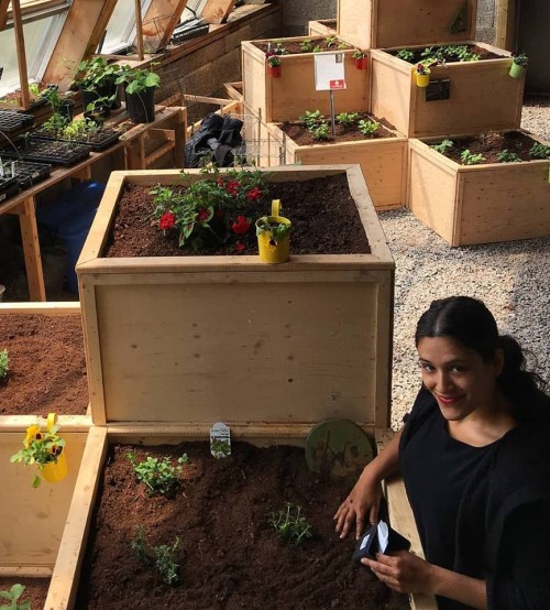 Shaani Singh working in the Hope Blooms greenhouse