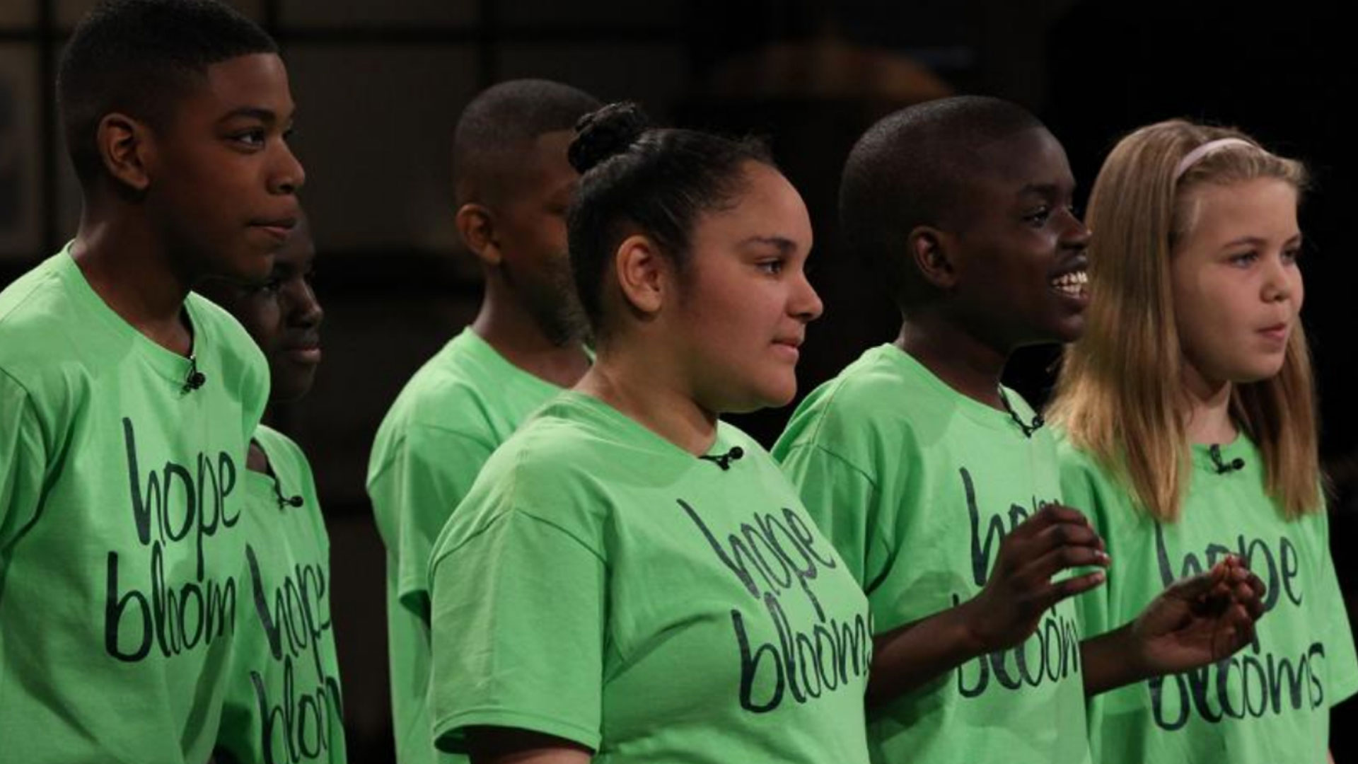 Dragon's Den Pitch