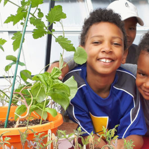 Youth Urban Agriculture